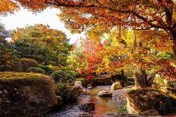 福岡-雷山千如寺大悲王院