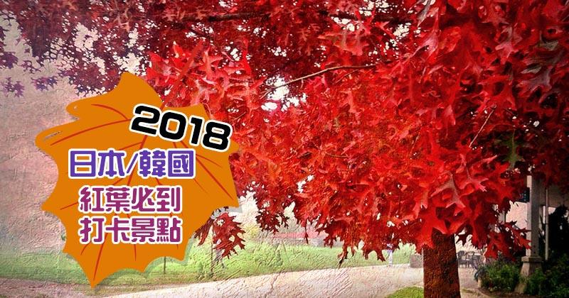紅葉2018!日本、韓國IG靚相打卡必到之處 - Hotels .com