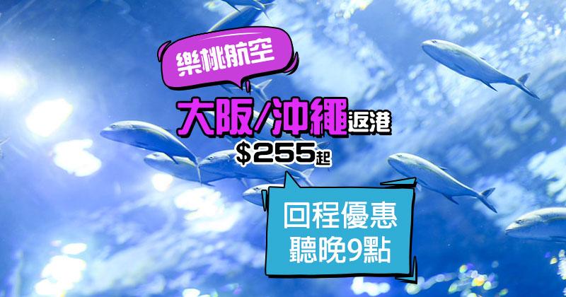 12回程再平少少!大阪返香港 單程$284/沖繩返香港 單程$255起,聽晚9點開賣 - 樂桃航空 Peach