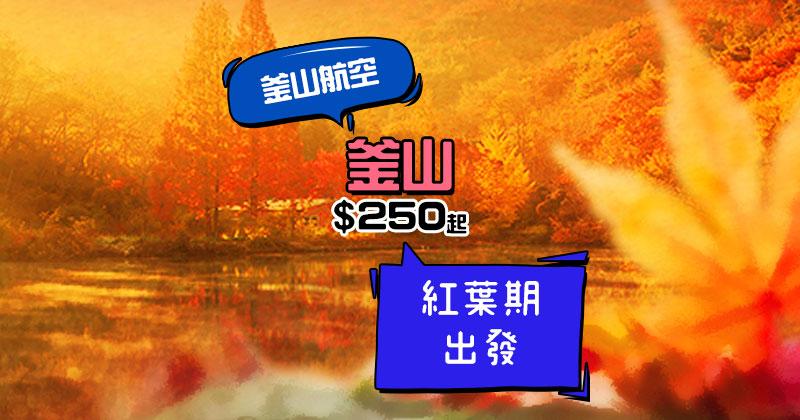 秋季賞紅葉!香港/澳門 飛 釜山 單程$3250,12月底前出發 - 釜山航空