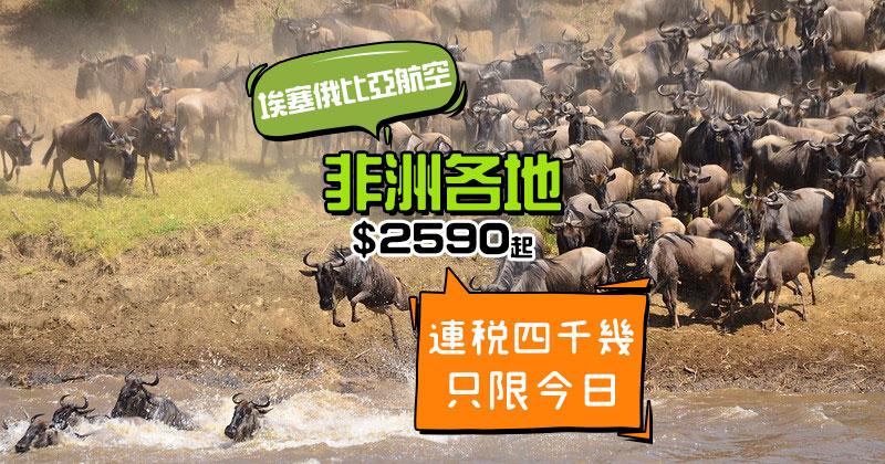 超平飛睇動物大遷徙!香港 飛 非洲各地 $2590起,只限今日 - 埃塞俄比亞航空
