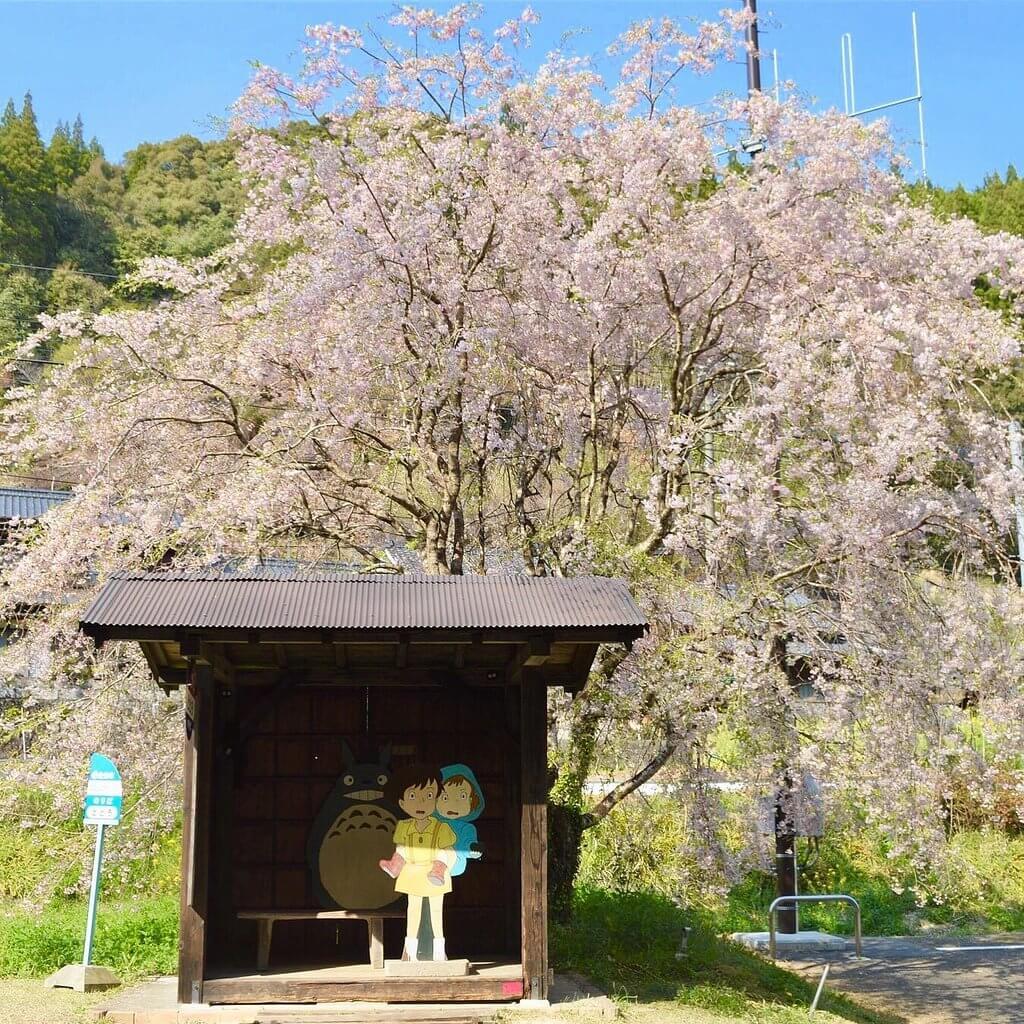 大分龍貓巴士站 (Totoro Bus Stop)
